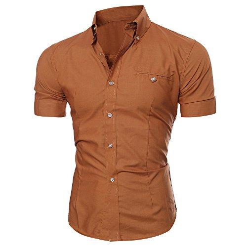 Litetao Men Business Dress Shirt Luxury Slim Fit Short Sleeve Casual Lapel Button Top (Brown, L)