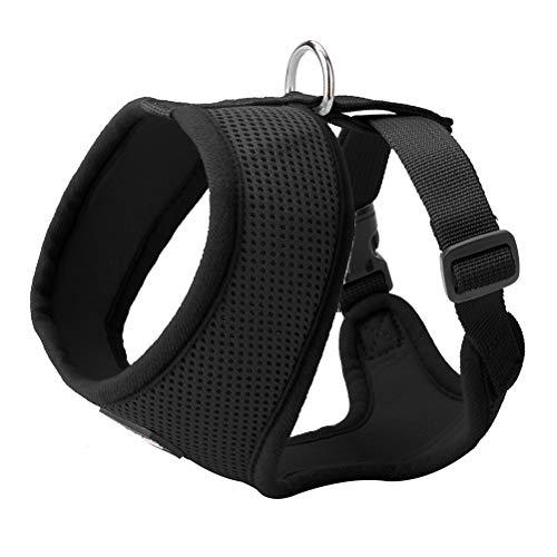 Comfort Dog mesh Harness with Leash - Pet Adjusted Soft Mesh Padded Vest - Best for ()
