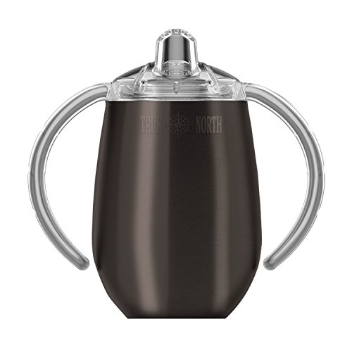 True North Stainless Steel Sippy Cup, 9 oz | Double Wall Vacuum Insulated (Jewel Charcoal)