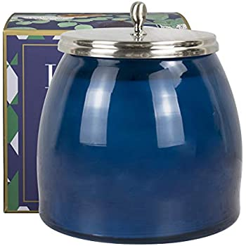 Aromatherapy Stress Relief Candle, Large Scented Jar Candle, Christmas Candle Gift, Eucalyptus & Fig, 18.34Oz