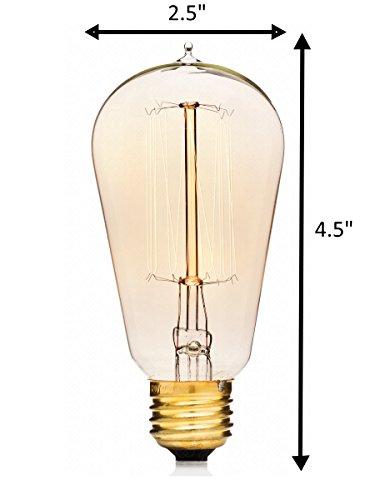 Edison Bulbs By Deneve 1 Bulb St58 Standard Size Thomas Edison 40w Light New Ebay