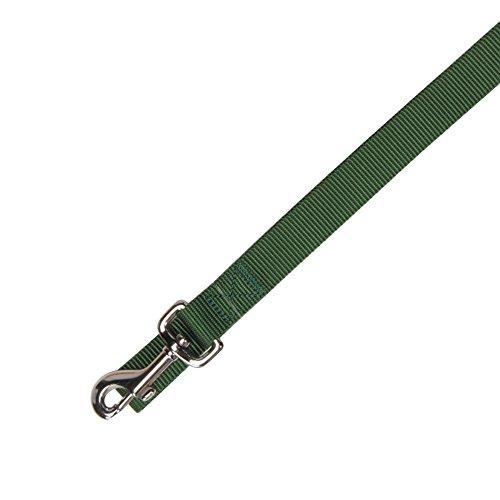 Zack & Zoey Basic Nylon Dog Leash, 4-Feet x 5/8-Inch Lead, Green