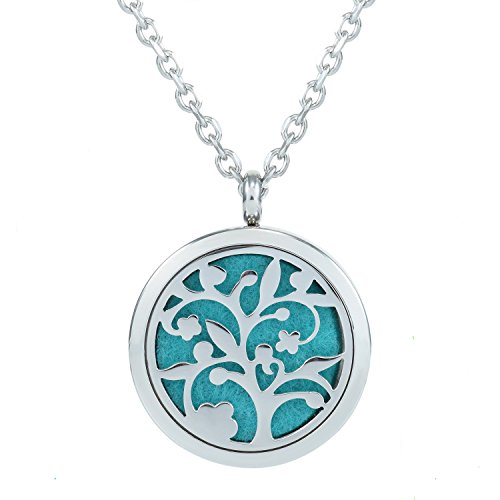 Jenia Aromatherapy Essential Oil Diffuser Necklace Stainless Steel Locket Pendant With 8 Felt Pads 24''
