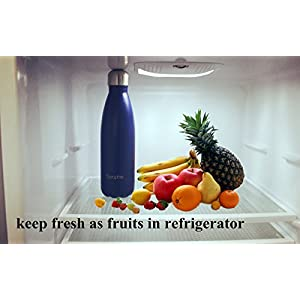 Vacuum Insulation Water Bottle (Navy Blue)