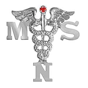 NursingPin Masters of Science in Nursing MSN Pin with Ruby in Silver