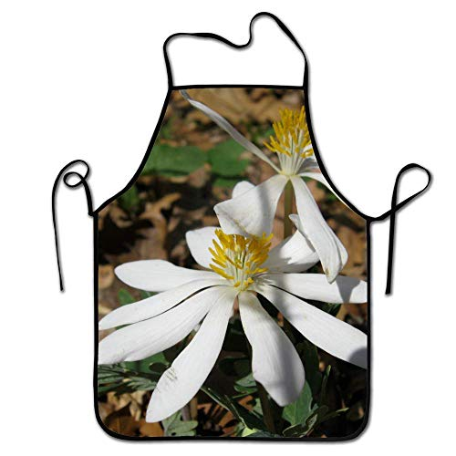 Aprons for Women/Men Personalized Bloodroot Flower Grill Waitress