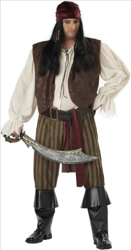 Pirate Costumes Plus Size (Rogue Pirate Plus Size Costume)
