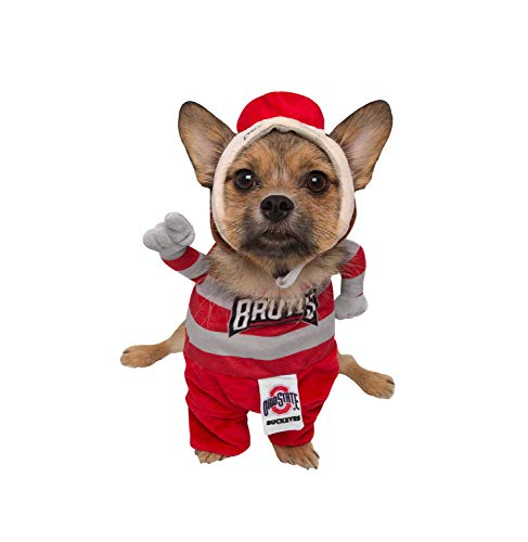 Brutus Halloween Costume (Pet Krewe Ohio State University Brutus The Buckeye Lucky Dog Pet Costume,)
