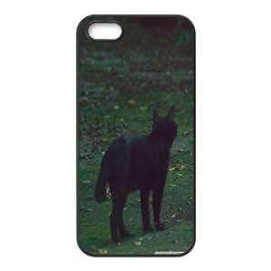 black cat 6 Case For Ipod Touch 5 Cover Cases, Case For Ipod Touch 5 Cover For Women Protective Stevebrown5v - Black
