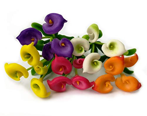 The Best Buy Set of 5 Dollhouse Miniature Colorful Blank Calla Lilly Bouquet Flowers ()