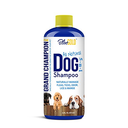 Blue Gold All Natural Dog Shampoo Puppy Shampoo. Deodorizing Antibacterial Anti-Fungal Dog Shampoo for Itchy Dog Skin, Dog Allergies, Dog Dandruff, Dog Shedding, Dog Mites Fleas Ticks Lice Mange. ()