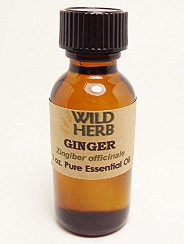 wild ginger oil - 9