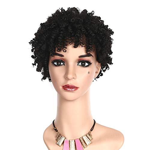 JJLIKER Brown Black Curly Hair Wigs For Black Women Synthetic Short Wigs For Black Women African American Women -