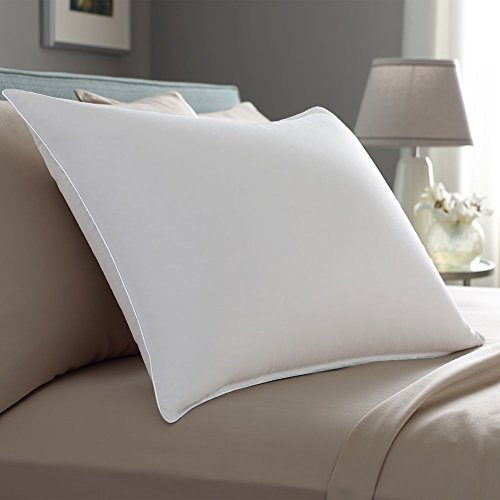 Pacific Coast Down Surround Queen Size 2-Pillow Set With 2 Queen Size Pillowtex Pillow Protectors (2 Chamber Pillow Top)