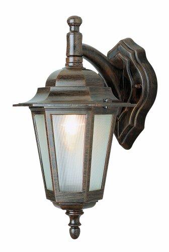 Trans Globe Lighting 4056 BK Outdoor Alexander 14.5