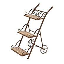 Deco 79 66553 Metal/Wood Stair Step Ladder Plant Stand, 25 by 31-Inch