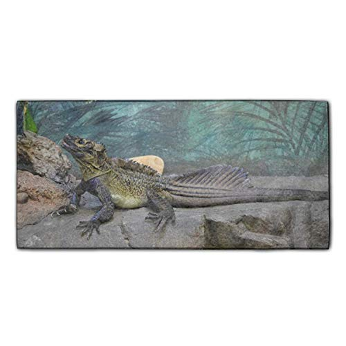 indeaxwory Large Polyester Beach Towel, Luxury Resort Towel Faded Print, Large Super Soft Ultra Absorbent Surf Towels, Unique Designer Animal Lizards Sailfin Printed Bath Towel