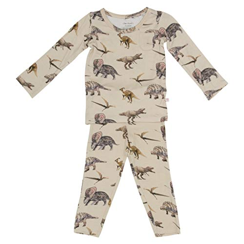 Two Piece Baby Pajamas Set - Loungewear Buttery Viscose from Bamboo - Premium Baby Clothes (5T, Vintage Dino)