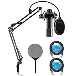 sE Electronics sE2200 Large-Diaphragm Condenser Microphone for Vocals, Acoustic/Electric Guitars, Drum Overheads Bundle…