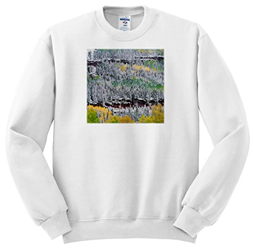 - 3dRose Danita Delimont - Trees - USA, Colorado, Uncompahgre Forest, San Juan Range, Fall snowstorm. - Sweatshirts - Adult Sweatshirt 4XL (SS_259105_7)