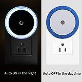 Night LED Light coersd US Plug Auto Light Induction Sensor Control Lamp Bedroom Flower LED Night Light (Blue)
