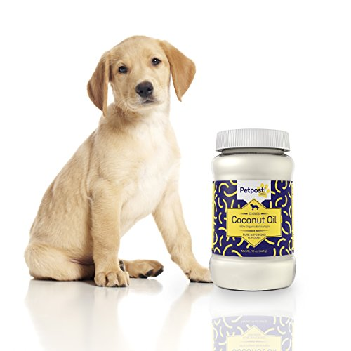 Petpost-Coconut-Oil-Hot-Spot-Itchy-Dry-Skin-Treatment-for-Dogs-100-Certified-Organic-Extra-Virgin-Superfood-Moisturizer-for-Skin-and-Coat-Dog-Itch-Relief-16-Oz