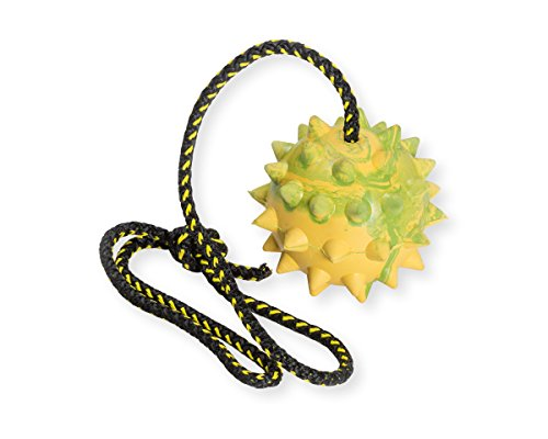 (Dog Rubber Spike Ball on Rope - Toy, Training, Reward, Fetch)