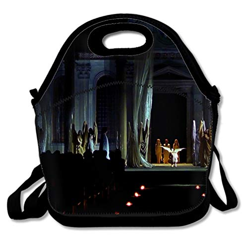Ltgyth Adult Lunch Box Insulated Lunch Bag Dark Occult Satanic Halloween Fallen Angel Witch Large Cooler Tote Bag ()