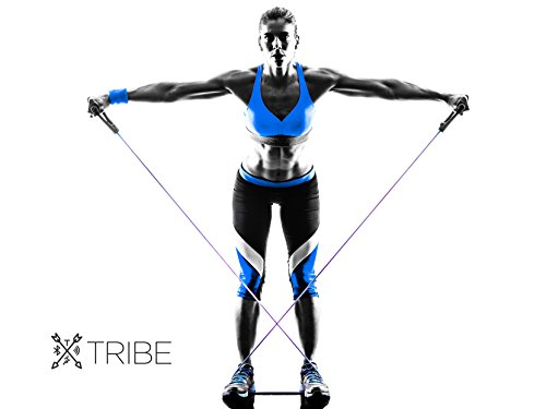Large Product Image of Tribe 11PC Premium Resistance Bands Set, Workout Bands - with Door Anchor, Handles and Ankle Straps - Stackable Up To 105 lbs - For Resistance Training, Physical Therapy, Home Workouts, Yoga, Pilates