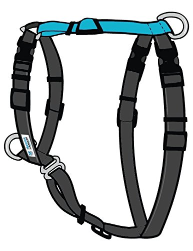 Blue-9 Pet Products Balance Harness Buckle Neck (Medium, Sky Blue)