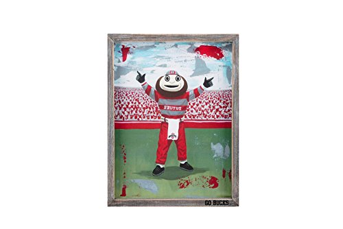 Glory Haus Ohio State Brutus Framed Canvas Collegiate Wall Art, Multi