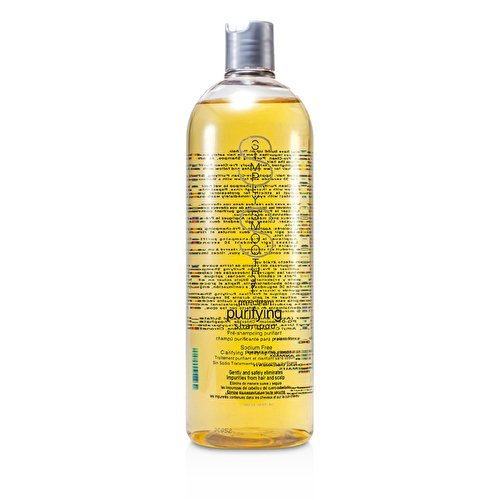 Simply Smooth Pre-Clean Purifying Shampoo 16 oz. by Simply Smooth