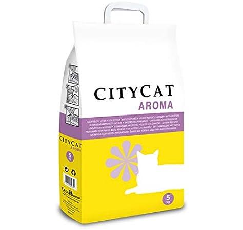 TOLSA City Cat 5KG SEPIOLITA Aroma: Amazon.es: Productos para mascotas