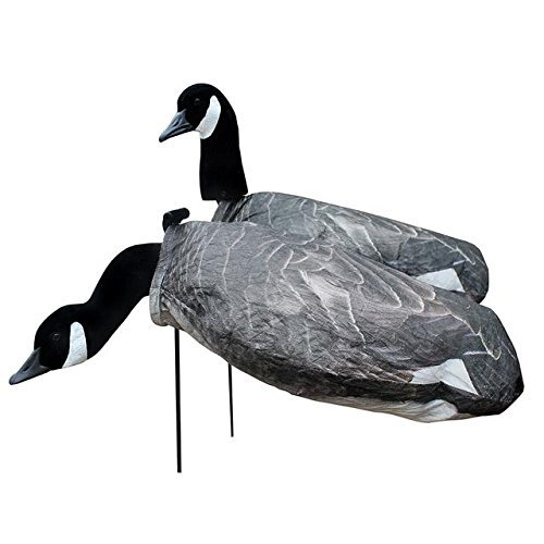 (White Rock Decoys Canada Goose 12 Pack -)