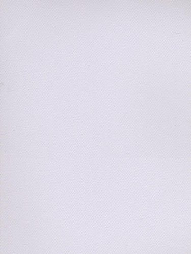Canson Mi-Teintes Tinted Paper (Lilac) 4 pcs sku# ()