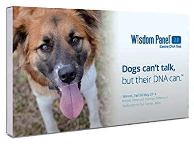 Mars Veterinary Wisdom Panel 3.0 Breed Identification DNA Test Kit by Mars Veterinary