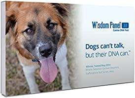 Wisdom Panel 3.0 Canine DNA Test Kit