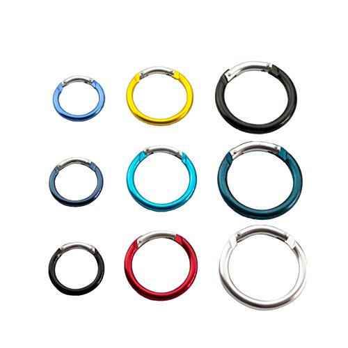 1.6 Inch Hiking Camping Spring Clip Aluminum Round Carabiner Hook, 6 Piece