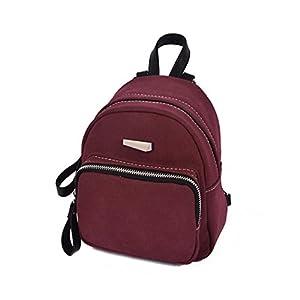 Fashion Ladies School Style Backpack,Tuscom@ (17×21×10CM, Wine)