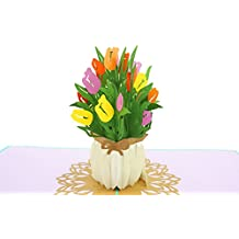 PopLife Spring Tulip Flower Bouquet 3D Pop Up Greeting Card for All Occasions - Mother's Day Card, Spring Garden, Anniversary Card - Folds Flat for Mailing - Sympathy, Happy Birthday, Get Well Flowers