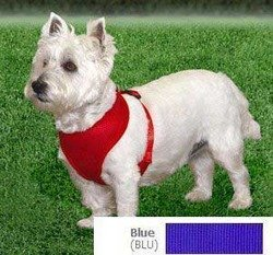Picture of Coastal  Comfort Soft Adjustable Dog Dog Harness - Blue Small For Dogs 11-18 lbs