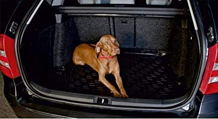 Copri Bagagliaio per Cani Rigido AntiGraffio SIXTOL Vasca Bagagliaio Auto in Plastica per Mitsubishi Outlander I Copertura Portabagagli Antimacchia