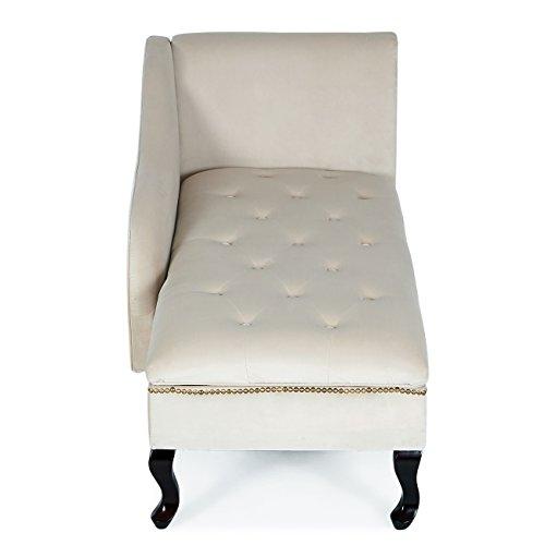 Stupendous Belleze Nailhead Trim Velveteen Storage Spa Chaise Lounge Inzonedesignstudio Interior Chair Design Inzonedesignstudiocom