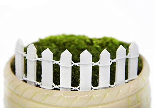 Vivian Mini Wood Picket Fence DIY Garden Miniature Landscape Dollhouse Plant Pot Decor Set 4pcs (White)