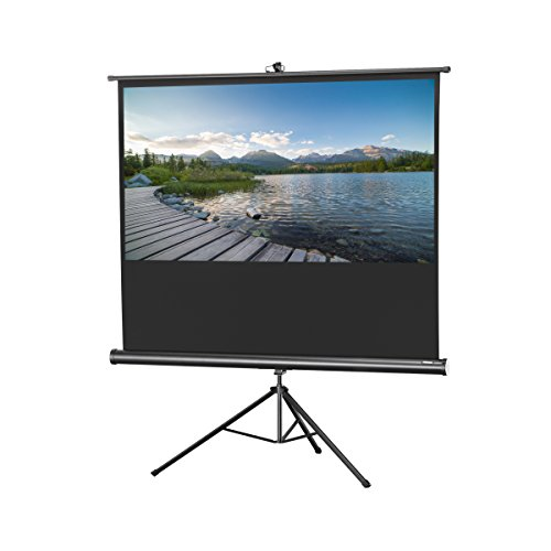 Format Tripod Screen - celexon 60
