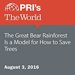 The Great Bear Rainforest Is a Model for How to Save Trees