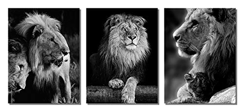 XOTOArt - African Animals Black and White