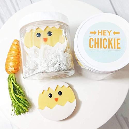Easter Chicks Soap Gift Set. Basket Stuffers for Kids