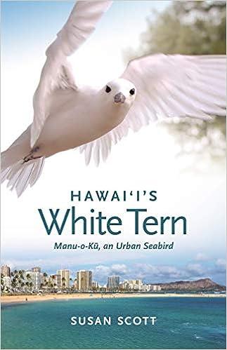 Descargar De Torrent Hawai`i's White Tern: Manu-o-ku, An Urban Seabird Donde Epub