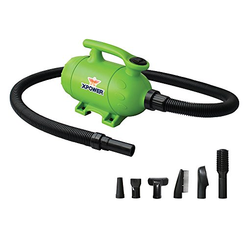 (XPOWER B-2 2 HP Pro-at-Home 2-in-1 Pet Force Dryer and Vacuum, Green)